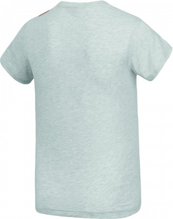NIUT T-Shirt 2020 light grey melange